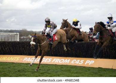 NEWBURY BERKS MAR 27 Jockey Brian Harding Takes Double Hit Over Fences In