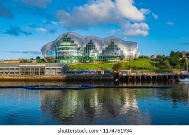 Newcastle, England - July 29, 2018: Sage Gateshead concert hall on Newcastle Gateshead Quayside as a seagull flies above river Tyne.