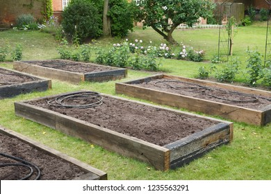 Newly built raised beds with irrigation hose before planting in a newly prepared vegetable garden
