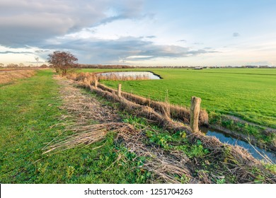 Newly cleaned ditch in a Dutch polder landscape near the village of Hooge Zwaluwe in the autumn season. Periodic cleaning of the polder ditches is required by the government in the Netherlands.