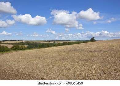 a newly cultivated hillside field overlooking patchwork fields  under a blue summer sky in the yorkshire wolds