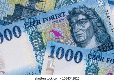 Newly introduced Hungarian 1000 forint banknotes close up