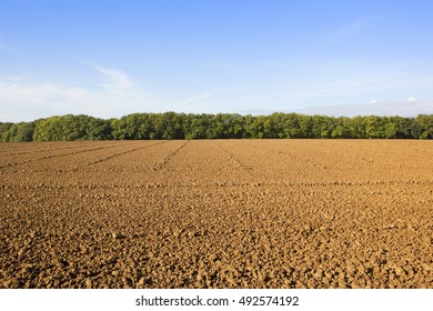 a newly plowed field with a line of trees on the horizon under a blue sky with wispy white cloud in autumn