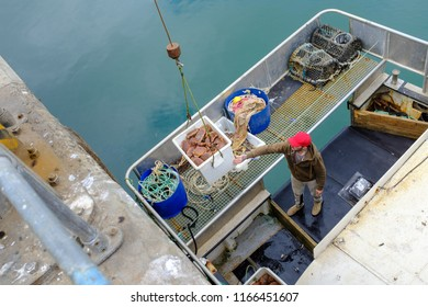 NEWLYN, ENGLAND - JUNE 20: Fisherman with crab catch in Newlyn harbour. In Newlyn, Cornwall, England. On 20th June 2018.