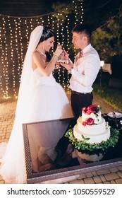 The newlyweds cut the wedding cake.