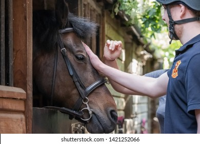 Newmarket, Cambridgeshire, UK - Circa June 2019: Pair of young University students seen tending there horse in a private stable block. The horse is being pampered prior to being mounted for a hack.
