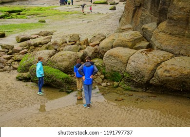 NEWPORT, OREGON - MAY 19, 2018 - Beach explorers walk among algae covered rocks at low tide near Devil's Punchbowl, Newport, Oregon