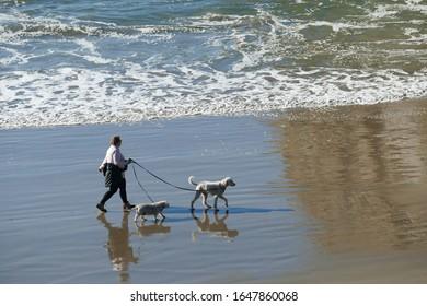 NEWPORT, OREGON - NOV 20, 2019  - Silhouettes of dog and owner on the beach near  Newport, Oregon