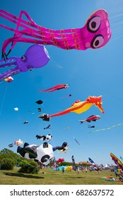 NEWPORT, RHODE ISLAND USA - JULY 9, 2017: People enjoying the Newport Kite Festival  Brenton Point State Park Newport Rhode Island, USA.