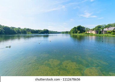 Newstead, England - June 10 2018: In Newstead Abbey grounds a swan and some ducks swim on the lake. On the far bank is a building called The Fort.
