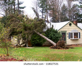 NEWTOWN, CONNECTICUT USA - OCTOBER 29: Aftermath of Hurricane Sandy toppling a tree on to a home in Newtown, Connecticut on October 29, 2012