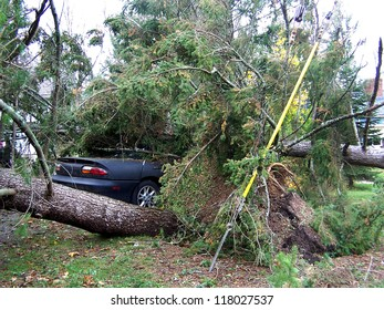 NEWTOWN, CONNECTICUT USA - OCTOBER 29: Aftermath of Hurricane Sandy toppling a tree on to a vehicle in Newtown, Connecticut on October 29, 2012