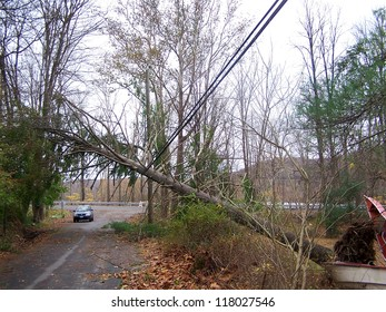 NEWTOWN, CONNECTICUT USA - OCTOBER 29:Aftermath of Hurricane Sandy dropping a tree on the power lines in Newtown, Connecticut on October 29, 2012