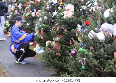 NEWTOWN, CT., USA, DEC 16, 2012: Sandy Hook Elementary School shooting, person kneeling placing ornament on tree, Dec 16, 2012 in Newtown, CT., USA