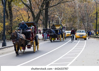 New-York, USA - NOV 19: Tourist horse carriages on a Central Park road on November 19, 2012 in New-York, USA.