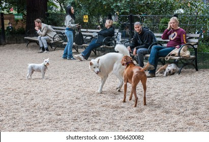 NEW-YORK, USA - SEPTEMBER 29, 2009: The owners and their playing dogs at Union Square, New York City. Usa