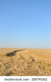 Next car on the wheat field, the beginning of the harvest