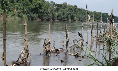 Nganjuk, East Java, Indonesia - April 28, 2019: plastics defame river water and stuck on bamboo struck that prevent abrasion