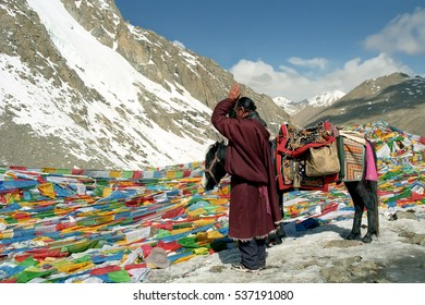 Ngari, Tibet, China - June 2011: Tibetan pilgrim praying and bowing at Drolma La pass with altitude 5550 meter above sea level In the way of Kailash Kora on June 2011 in Ngari, Tibet, China.