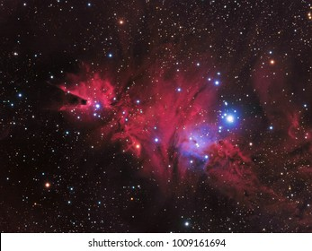 NGC 2264,The Christmas Tree Cluster,The Cone Nebula and Fox fur nebula. with Galaxy,Open Cluster,Globular Cluster, stars and space dust in the universe and Milky way taken by CCD Camera on telescope.