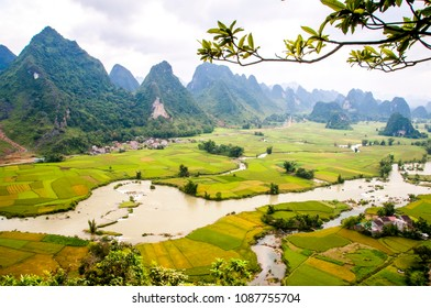 Ngoc Con moutain with rice field