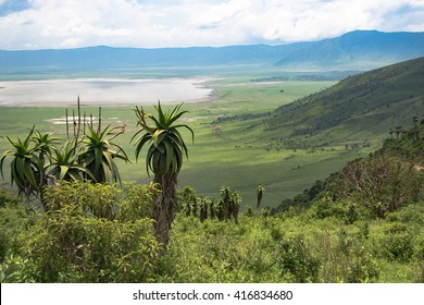 Ngorongoro crater with Lake Magadi landscape