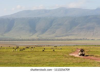 Ngorongoro reserve, Tanzania - 16 December 2017: Off road jeep on safari tour in Ngorongoro crater on sunny day