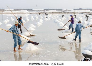 NHA TRANG, VIETNAM - 4/12/2016: Workers organize salt into piles at the Hon Khoi salt fields in Nha Trang, Vietnam.
