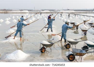 NHA TRANG, VIETNAM - 4/12/2016: Workers make salt piles at the Hon Khoi salt fields in Nha Trang, Vietnam.