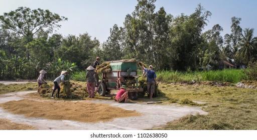 Nha Trang, Vietnam - Mar 23, 2016. People harvesting rice by machine on the field in Nha Trang, Vietnam.