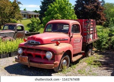 Niagara on the lake, Ontario - June 14, 2018: Front of 1952 Red Ford F-3 Pickup Truck at  the lake shore of Niagara, rusted and broken.