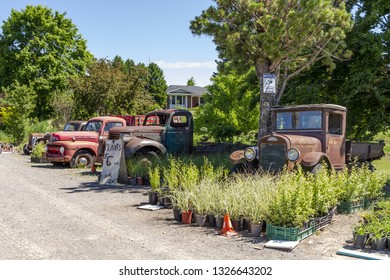 Niagara on the lake, Ontario - June 14, 2018: Old International Pickup Truck, Ford T and other old cars at  the lake shore of Niagara, rusted and abandoned.