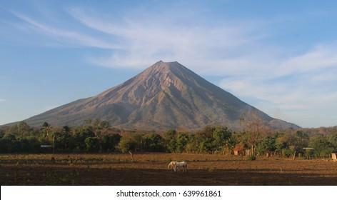 Nicaraguan Volcano with Grazing Horses