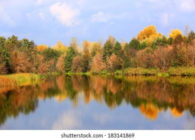 Nice autumn scene on lake