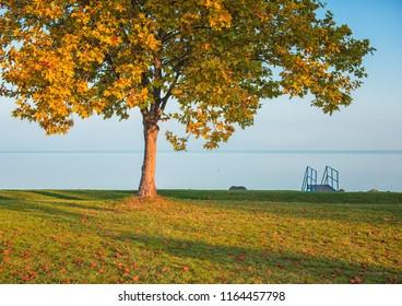 Nice autumnal scene at lake Balaton, Hungary