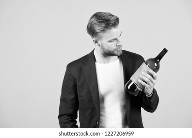 Nice choice. Man holds bottle alcohol drink. Social and cultural aspects of drinking. Man thoughtful estimating bottle alcohol. Businessman formal suit confidently welcomes grey background.