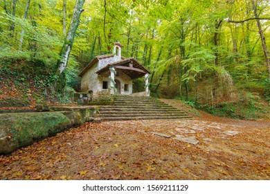 Nice church in an autumn wood