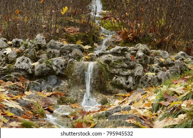 Nice curved brook in forest. Natural and pure water from fountain in woods.