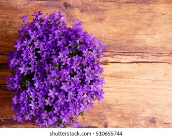 nice flowers on a rustic background