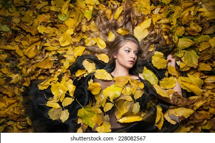 nice girl covered autumnal leaves 260nw 228082567