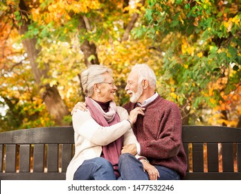 Nice grandma and grandpa sit on the bench in autumn park and look at each other. After all these years I cannot stop looking at you