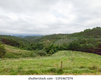 nice green hill over the mountains