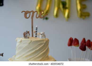 Nice image of birthday cake at a childs first birthday party.