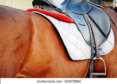 Nice image of a saddle seat on a horse back