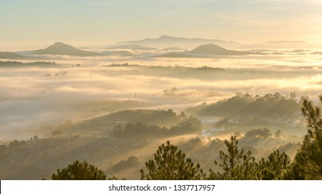 nice landscape of Da lat city, the sunrise on the fog city, the mist of city, view from top of moutain. The sun, the fog, rays through the houses and the pines