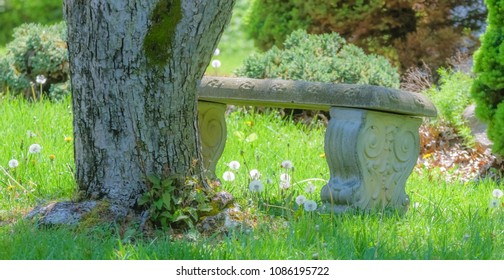 Nice little sitting bench at park on a spring morning