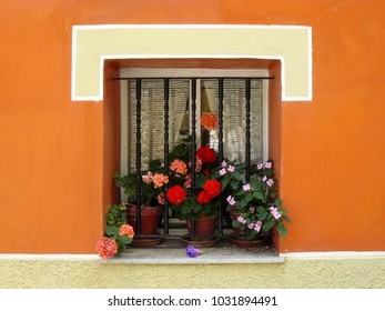 Nice old window with geraniums