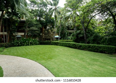 Nice outdoor lawn