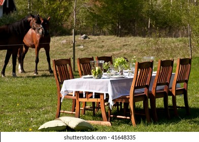 Nice outdoor table setting on the backyard on a summer day