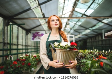 Nice pensive florist in apron standing and holding flowers in metal pot while dreamily looking aside in greenhouse